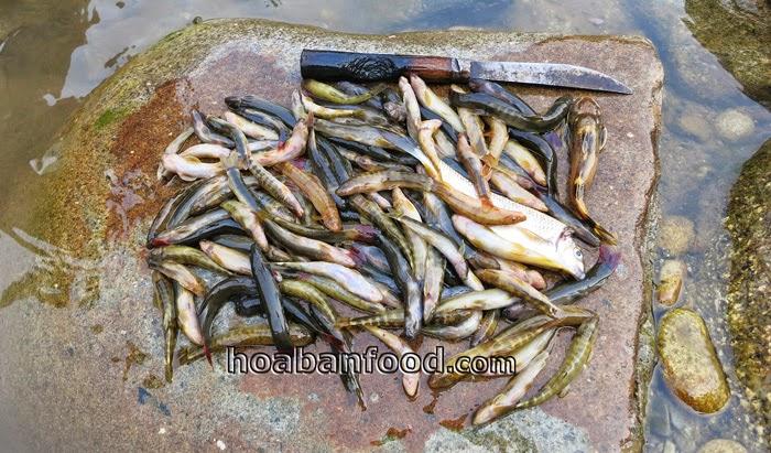 câu cá bống suối tây bắc - 9