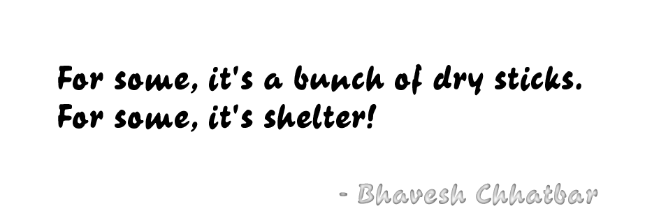 For some, it's a bunch of dry sticks. For some, it's shelter! - Bhavesh Chhatbar