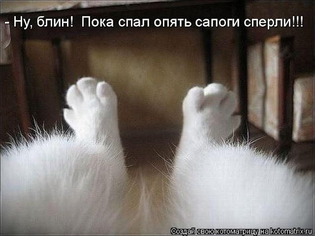 Анекдоты, приколы и всё , что вызывает улыбку и хорошее настроение - Страница 11 Kotomatrix_062
