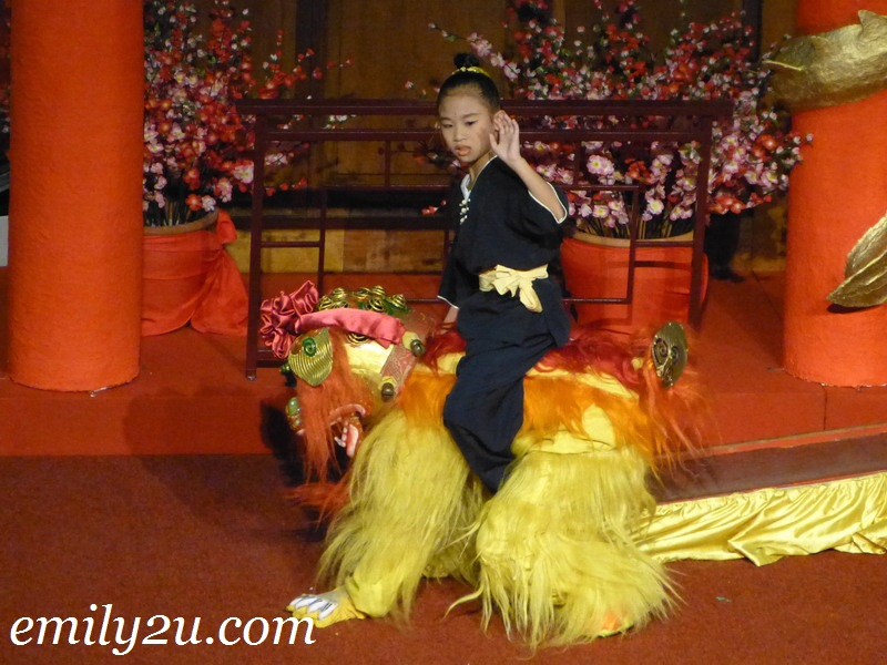 North lion dance performance