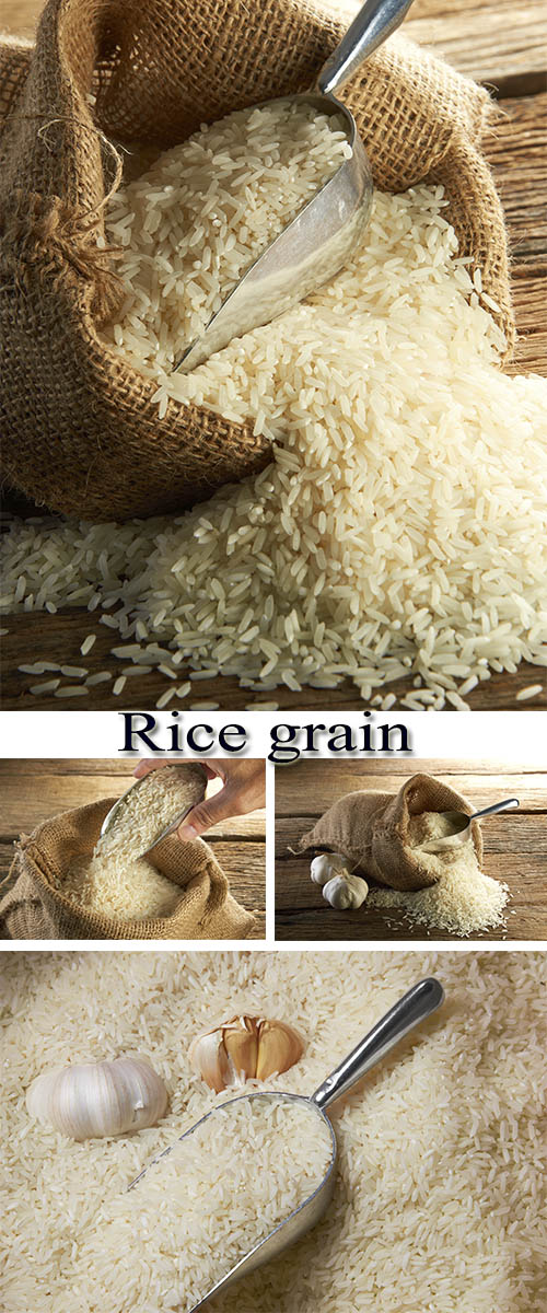 Stock Photo: Rice grain