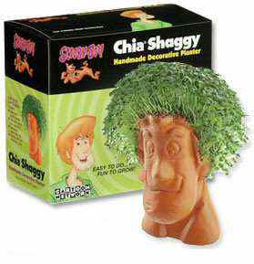 Shaggy Chia Pet