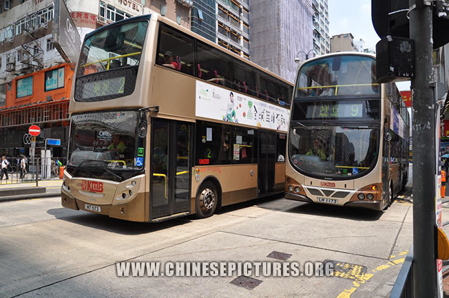 Hong Kong Bus Photo