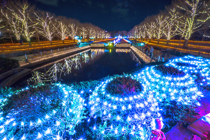 昭和記念公園 Winter Vista Illumination 写真8