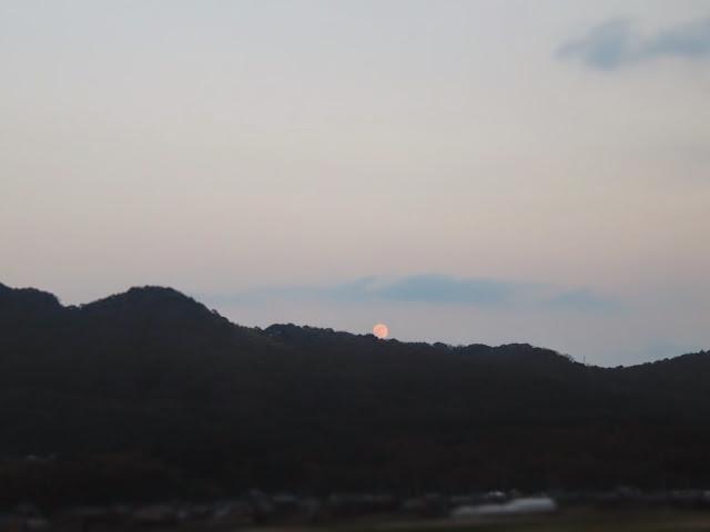 曽根干潟からの月-1