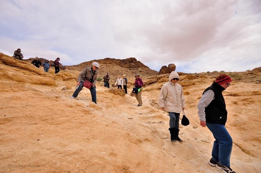 Спуск в ущелье Эйн Йоркам. Экскурсия гида Светланы Фиалковой в пустыню Негев.