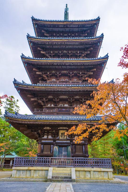 京都 紅葉 仁和寺 写真2