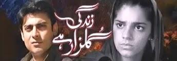 Hum TV Drama Zindagi Gulzar Hai