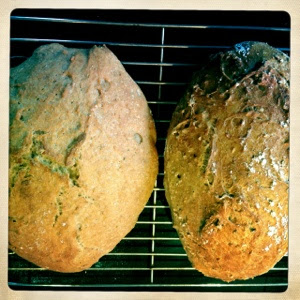Verdens bedste brød : Øl-variation af verdens bedste brød