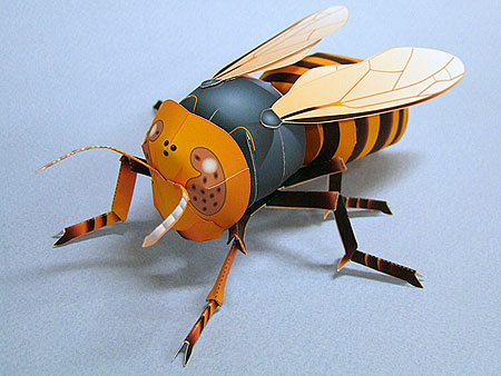 Japanese Giant Hornet Papercraft