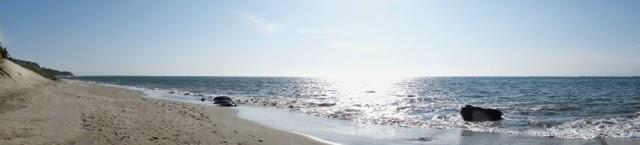 pocitas beach mancora peru