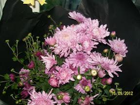 Хризантемы - королевы осени - Страница 2 100_2718