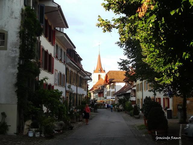 passeando - Passeando pela Suíça - 2012 - Página 15 DSC05496a