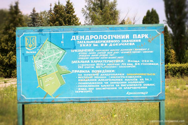 Дендропарк имени Докучаева (на Рогани), 28 июня, Carminum