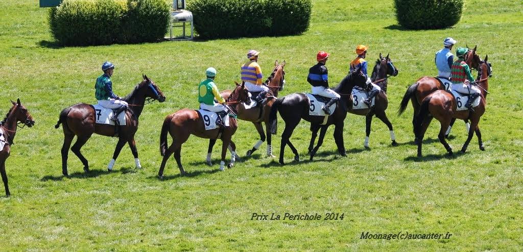Photos Auteuil le 21-06-2014 IMG_2187