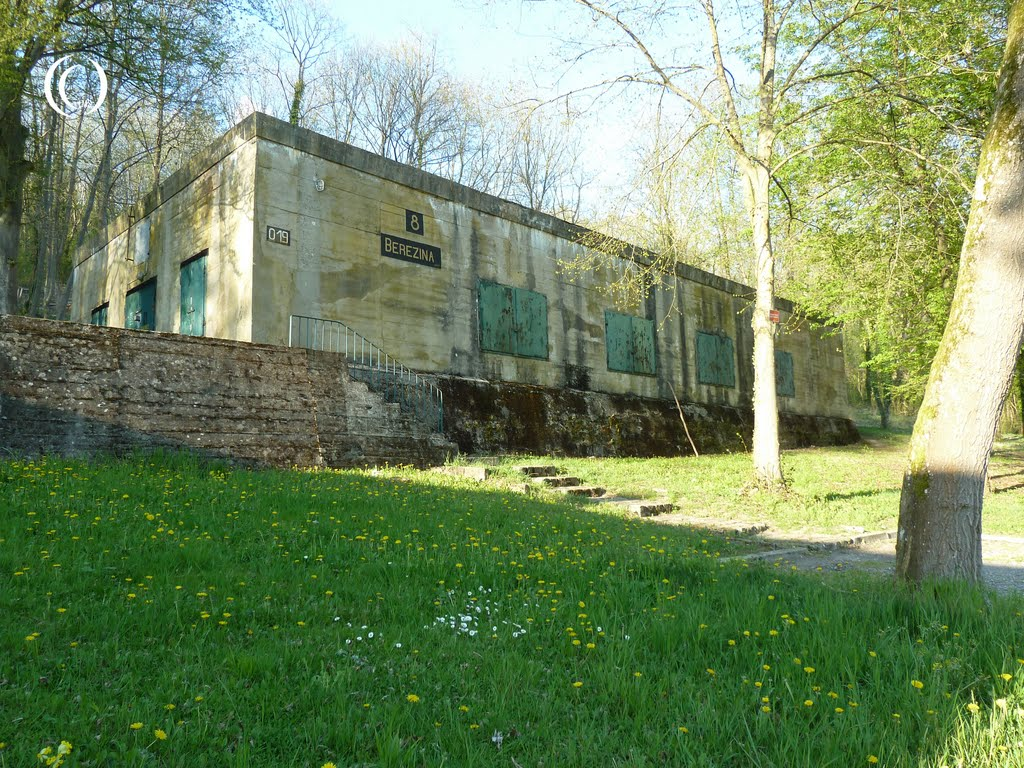 Bunker 019 is the home of the ASW2 association at Wolfsschlucht 2 Margival France