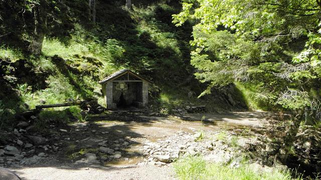 Στο δρόμο για Πανταβρέχει - ανάμεσα στην Καστανούλα και τη Ροσκά