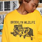 2012-12-19 WED - Brooklyn Wild - Brooklyn, NY #1vsM