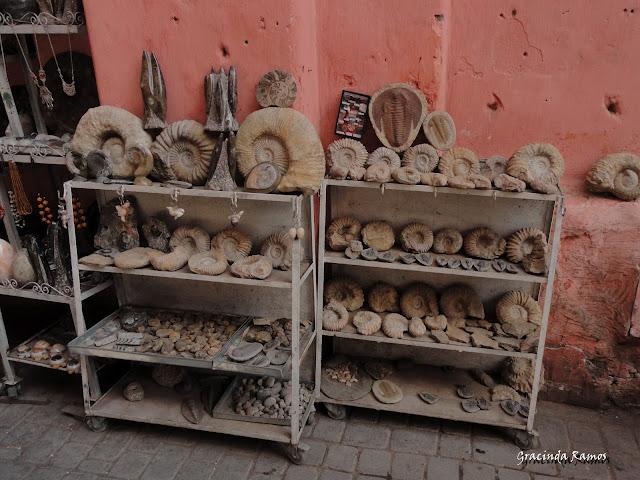 Marrocos 2012 - O regresso! - Página 4 DSC05211