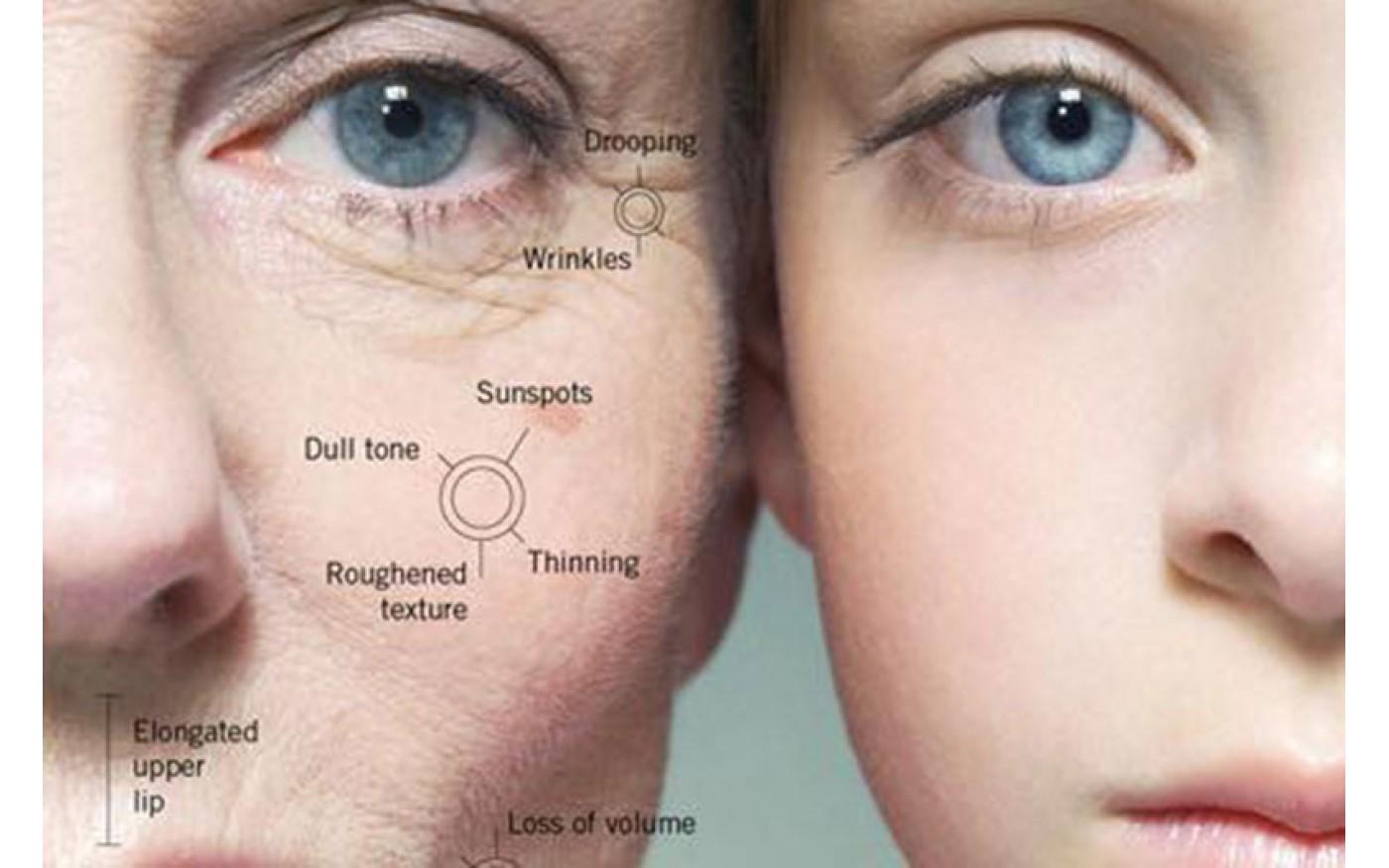 Tìm hiểu cách sử dụng collagen hợp lý để làn da tươi trẻ