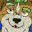 Koda Raccoon avatar image