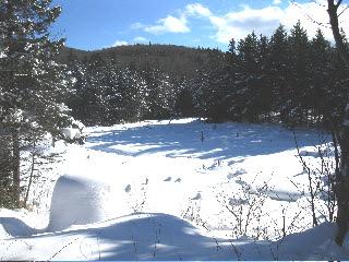 Phenn Basin (1/22/2011)