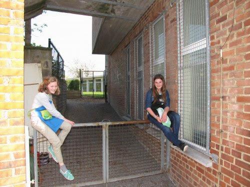 Twee meisjes op ... een hek.