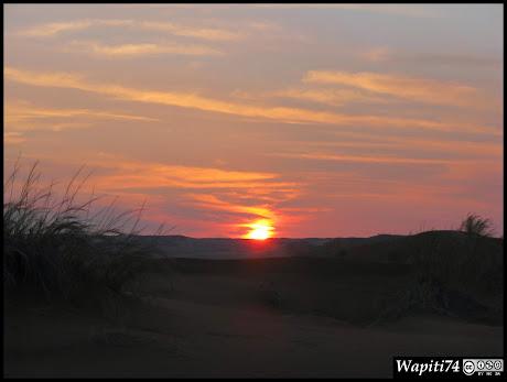Balade australe... 11 jours en Namibie - Page 2 IMG_0754