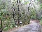 Trailhead for Waterfalls Loop Trail