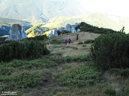 trasee marcate in Bucegi - Saua Batrana - Poiana Guţanu