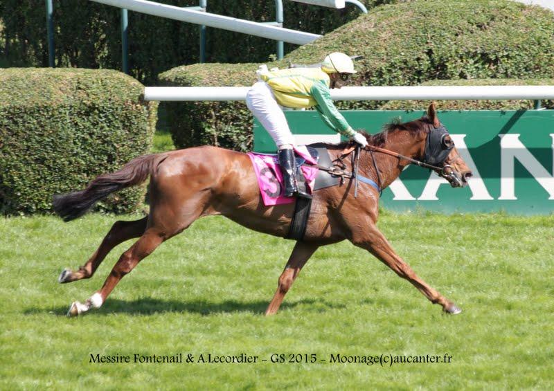 Photos Auteuil 17-05-2015 Journée du Grand Steeple IMG_0215