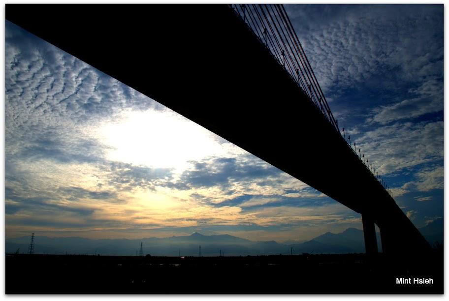 斜張橋(圖5枚)