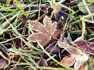 French Village Diaries France countryside walks frosty leaves