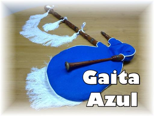 VENDO una GAITA gallega que lleva(639)