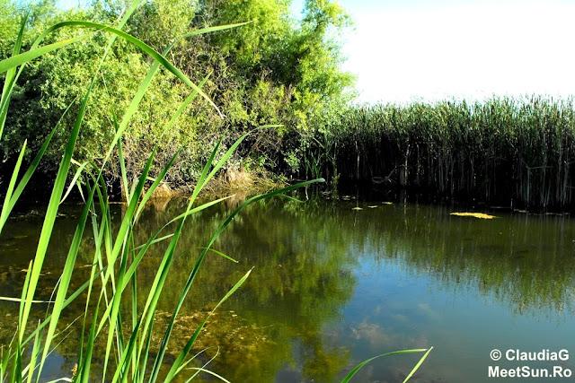 Bucuresti. Lacul Vacaresti