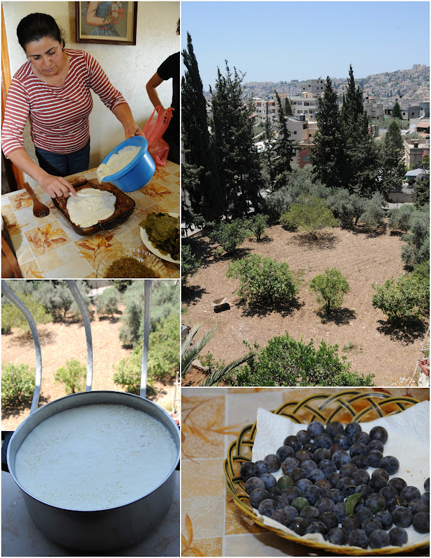 cooking in Nazareth, arabic food