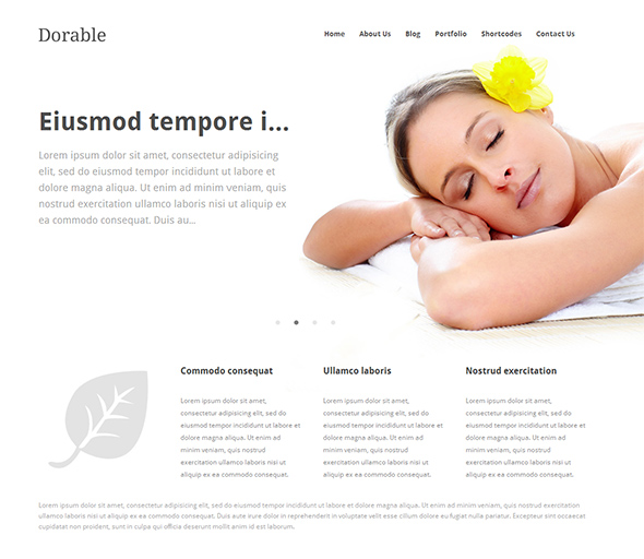 Dorable WordPress Theme for Business Websites