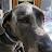 Mitch Newlin avatar image