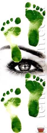 mata kaki