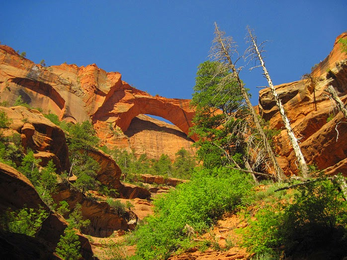 Kolob Arch (15 Best Hikes in Zion National Park).