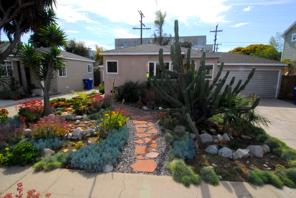 Drought Tolerant Gardens Drought Tolerant Garden Design By