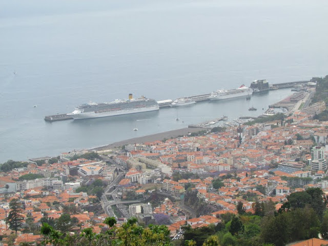 Funchal bay with some cruise ships