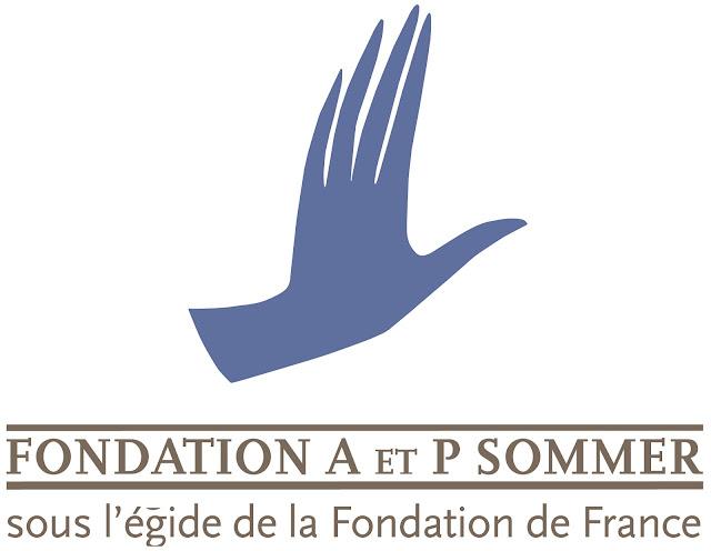 Fondation A et P Sommer Logo