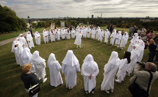 Discipline Of Druids Image