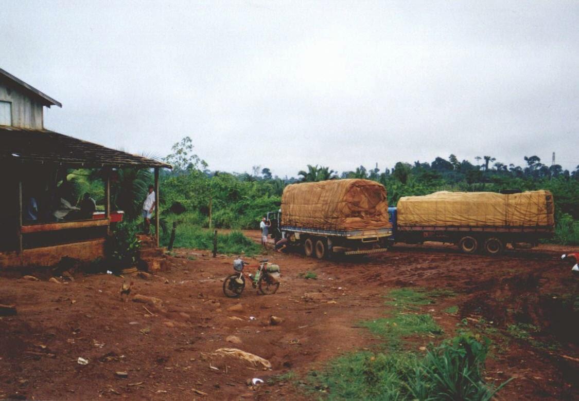 Wirtshaus an der Transamazonica