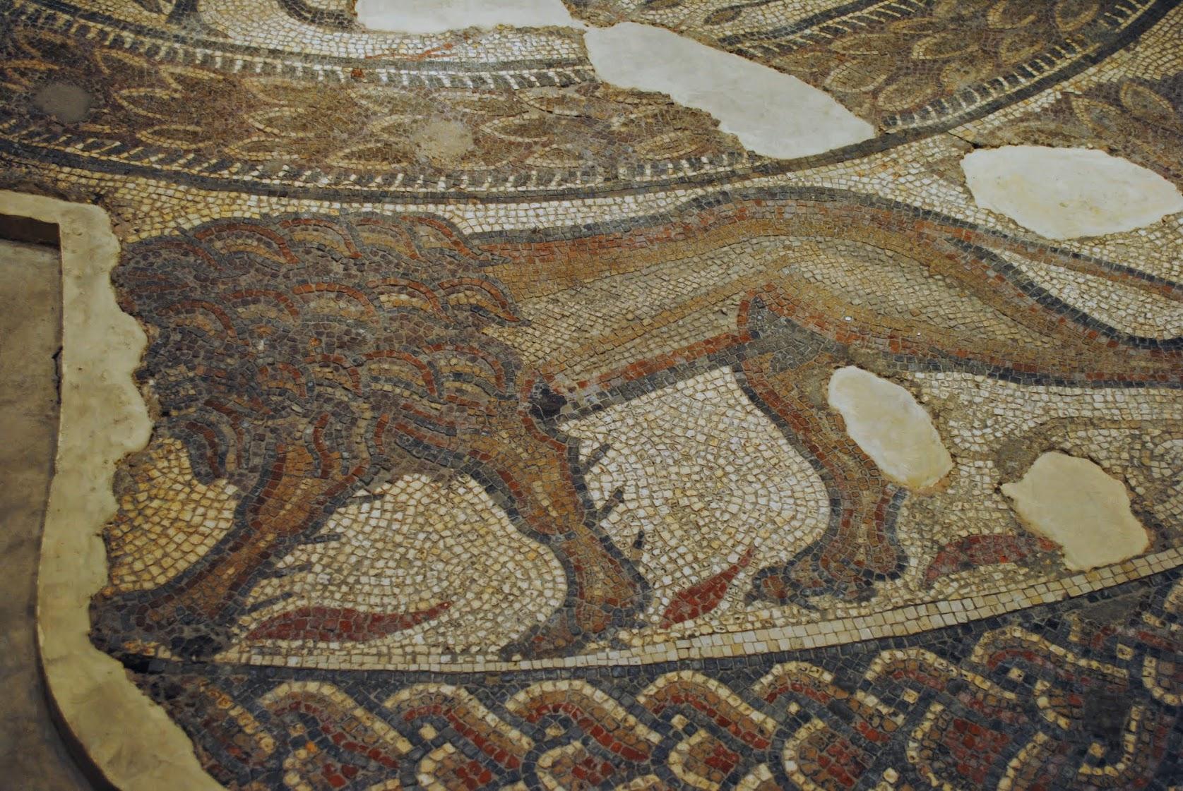 My Photos: England -- Mosaics -- Cirencester -- Corinium Museum - Orpheus Mosaic