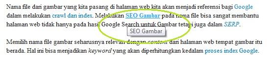 SEO Google Internal Link