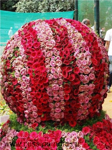 Ботанический сад, шоу цветов, Индия, Бангалор