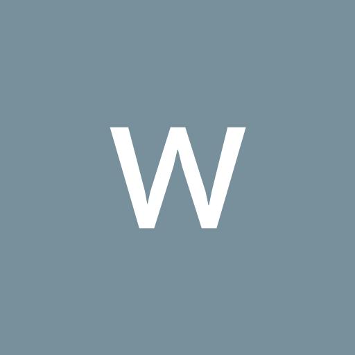 wellington pereira da silva