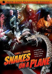 Chuyến Bay Với Rắn - Snakes On A Plane poster